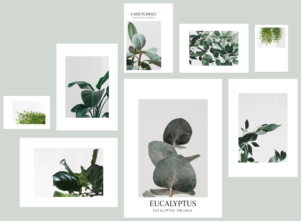 It's time for early spring: free minimalist greenery printables